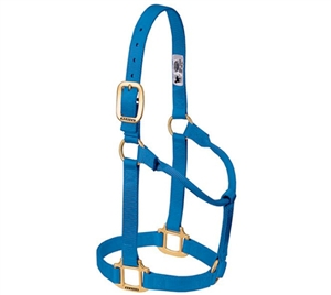 "3/4"" Yearling Nylon Halter for Sale!"