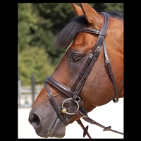 Working Collection Bridle Crank noseband with flash