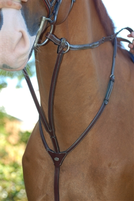 Fancy Running Martingale