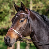 La Cense Bitless Bridle