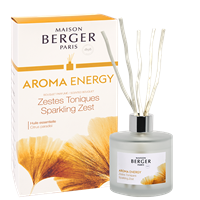 Bouquet Diffuser Aroma Collection Energy