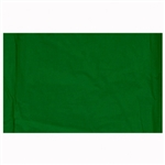 10x24 Chroma key Green