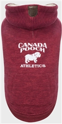 Cozy Caribou Hoodie  | Knits | Canada Pooch