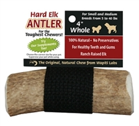 Wapiti Labs  Dog Elk Antler Chew – 4 inch Whole