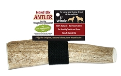 8 Inch Whole Chew | Elk Antler Chew | Wapiti Labs, Inc.