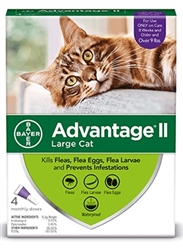 Advantage® II for Large, over 9 lbs Cats 1 dose