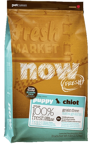 PETCUREAN NOW Fresh Grain Free Large Breed Puppy 25 lb.