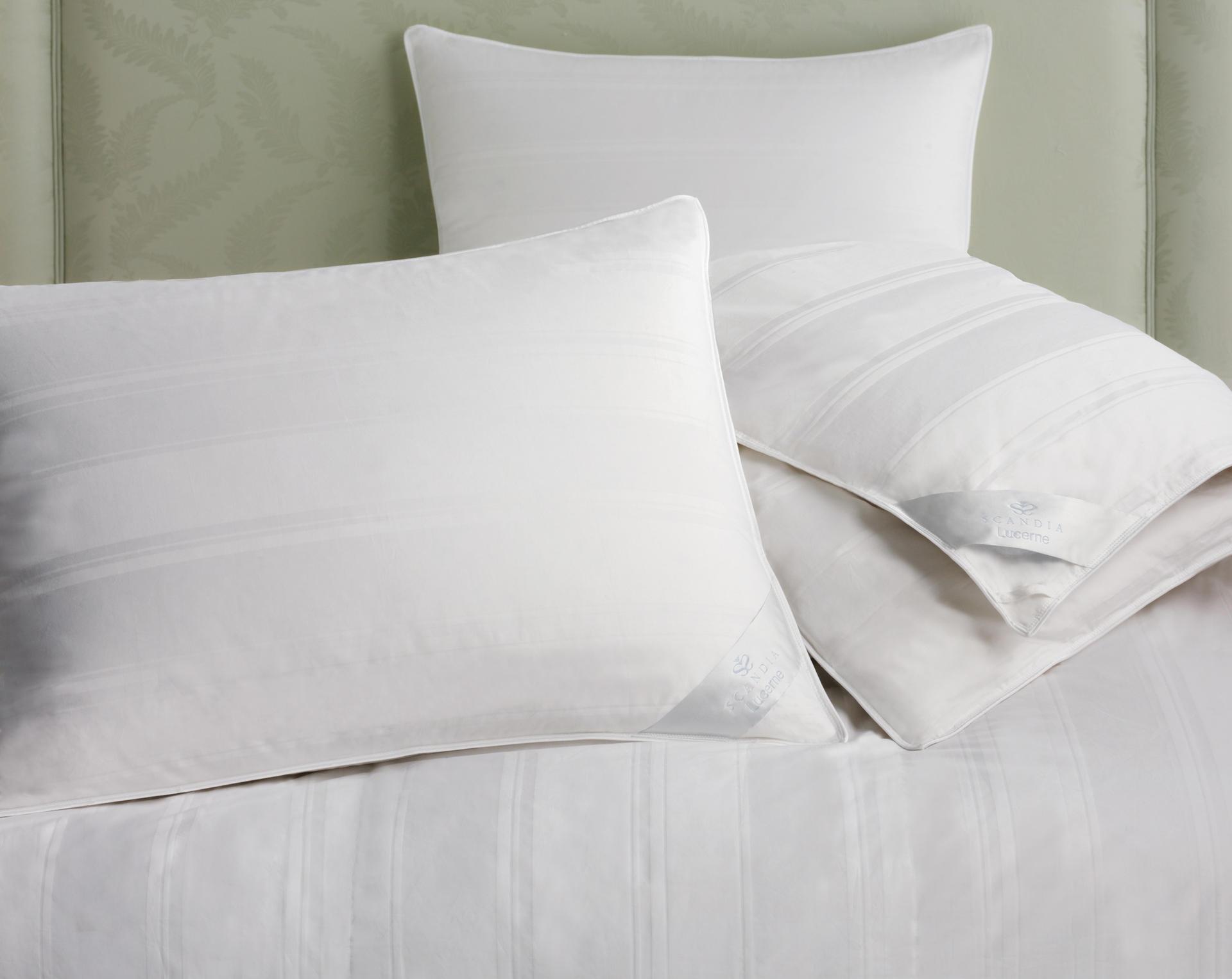 lucerne goose down pillow