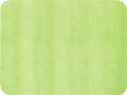 Green Lizard Felt-Backed Placemat by Caspari