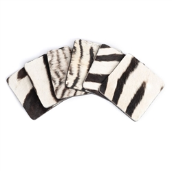 Zebra Hide Coaster (Set of 6) by Ngala Trading Co.