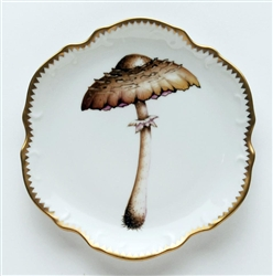 Mushroom #4 Hors D'Oeuvre Plate by Anna Weatherley
