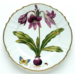 Flowers of Yesterday Raspberry Lily Dinner Plate by Anna Weatherley