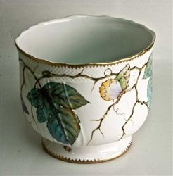 Giftware Cachepot by Anna Weatherley