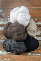 Sarafina Grays Core Sampler