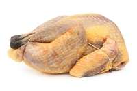 Guinea Fowl Meat is moist, very lean, tender and flavorful. Guinea fowl meat is white like chicken but its taste is more reminiscent of pheasant, without excessive gamey flavor.