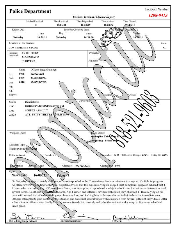 Police Incident Report Paperwork Instant Download 2 Pages