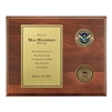 Coins Plaque (FEMA)