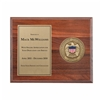 Medallion Plaque Award (FEMA)