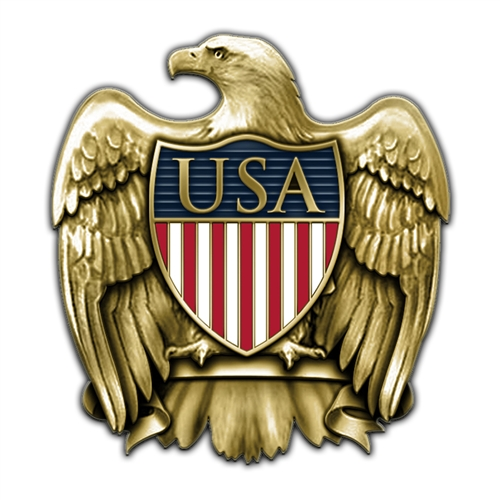 USA/Eagle Brass Lapel Pin