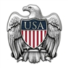 USA/Eagle Silver Lapel Pin