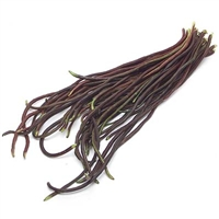 Red Chinese Long Bean