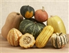 Winter Squash Sampler