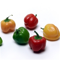 Organic Mini Bell Peppers