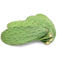 Cactus Leaves Nopales