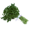 Organic Italian Parsley