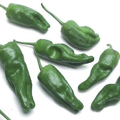 Padron Chiles