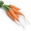 Baby French Carrots