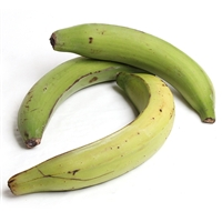 Plantain Bananas