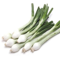 Mexican Green Onions