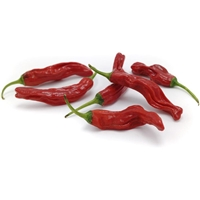 Red Shishito Peppers