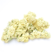 Fioretto Flowering Cauliflower
