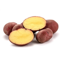 Baby Ruby Gold Potatoes