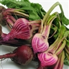 Baby Candy Cane Beets