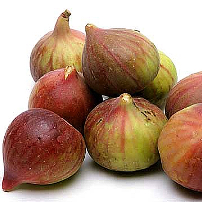 Brown Turkey Figs