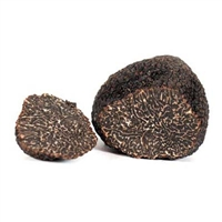 French Perigord Black Truffles