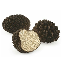 Italian Black Winter Truffles