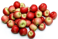 Organic Crimson Gold Apples