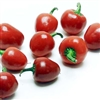 Cherry Bell Chiles