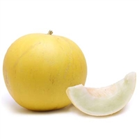Golden Honeydew Melon