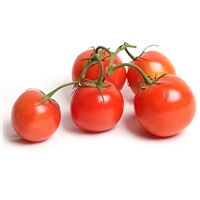 Hot House Red Cluster Tomatoes