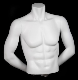 HEADLESS MALE MATTE WHITE FREESTANDING 1/2 TORSO FORM WITH ARMS
