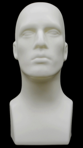 Display Head Form