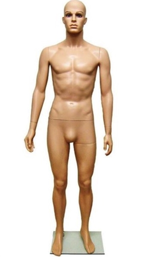 Realistic Fiberglass Male Mannequin from www.zingdisplay.com.  Standing pose with arms at his side. Durable plastic ideal for trade shows or busy showrooms.