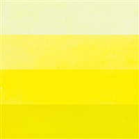 Primrose Yellow Hanco Y-2710