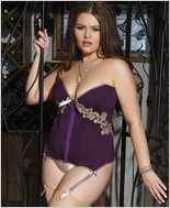 Plus Size Microfiber And Powernet Corset CQ-1416X