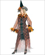 Rubies Costumes Feathered Witch Adult Costume RBC-57003